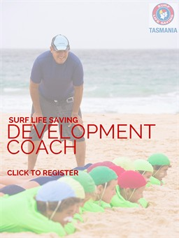 Development Coach Click Here